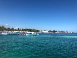 Seaweed also a problem at Isla Mujeres