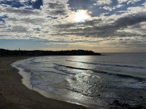Sunrise in Bondi