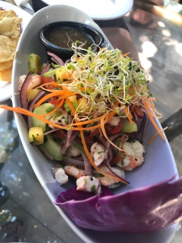 Seafood ceviche at North Garden, Isla Mujeres