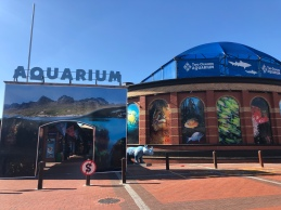Two oceans aquarium - Hop on Hop off bus pick up spot